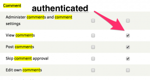 permissions table for comment settings toggled on for authenticated users